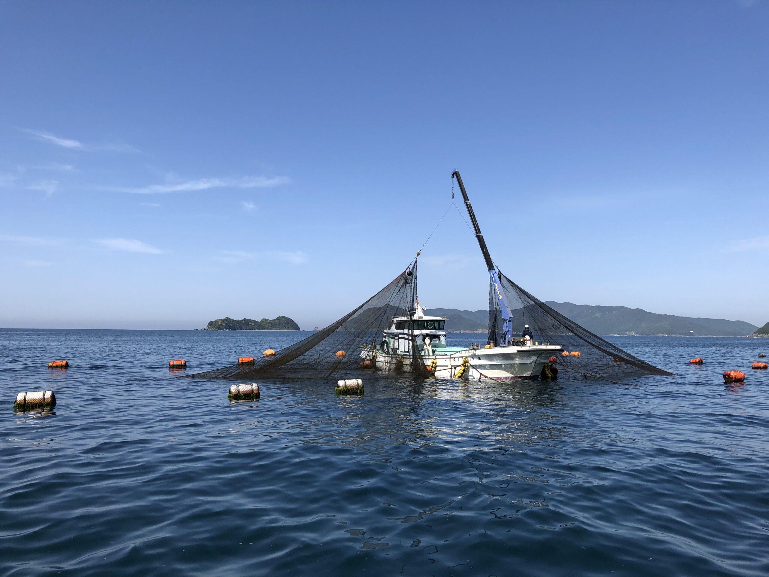 モスバーガーが新作で愛媛の漁協を支援「日本の生産地応援バーガー 真鯛カツ<愛媛県愛南町>」が5月20日より期間限定で発売